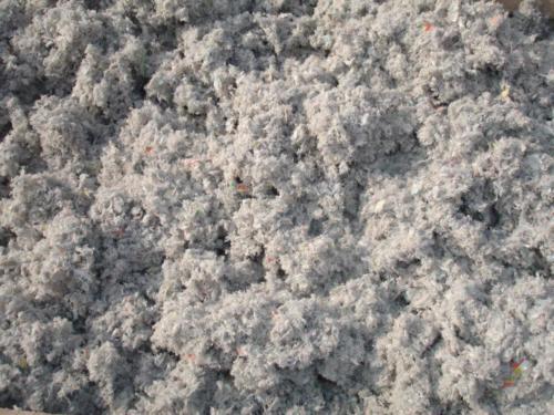cellulose2